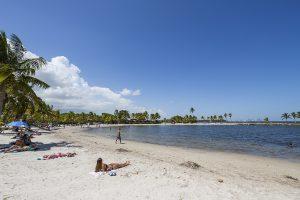 Matheson Hammock Park Beach