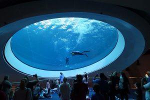 Музей науки в Майами